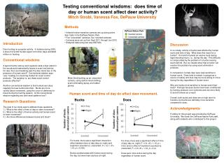 Testing conventional wisdoms:   does time of  day or human scent affect deer activity?