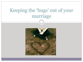 Keeping the 'bugs' out of your marriage