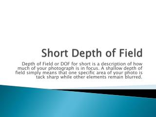 Short Depth of Field