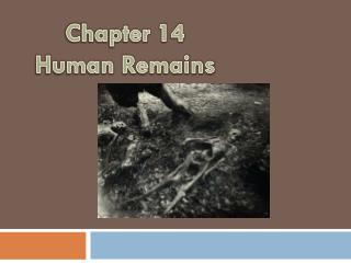 Chapter  14 Human Remains