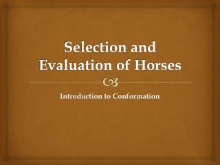 Selection and Evaluation of Horses