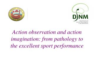 Action observation and action imagination: from pathology to the excellent sport performance
