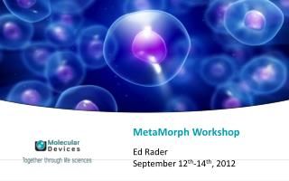 MetaMorph Workshop