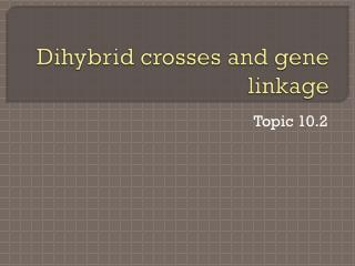 Dihybrid  crosses and gene linkage