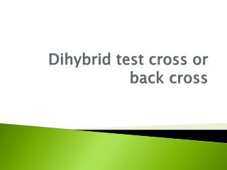Dihybrid  test cross or back cross