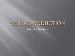 Cell Reproduction
