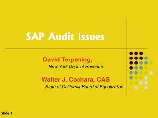 SAP Audit Issues