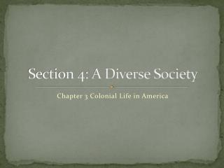 Section 4: A Diverse Society