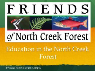 Education in the North Creek                      Forest