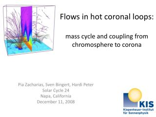 Flows  in hot  coronal loops : mass cycle  and  coupling from chromosphere  to  corona