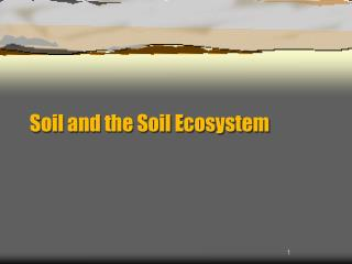 Soil and the Soil Ecosystem