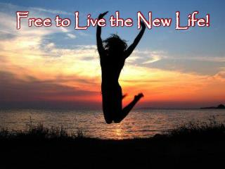 Free to Live the New Life!