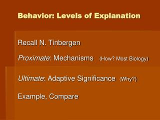 Behavior: Levels of Explanation