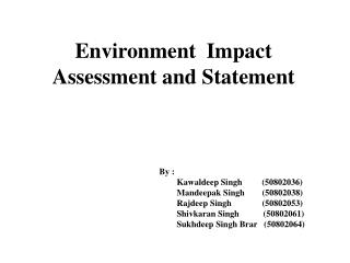 Environment  Impact  Assessment and Statement