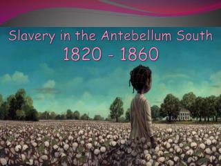 Slavery in the Antebellum South  1820 - 1860