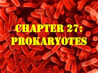 Chapter 27: Prokaryotes