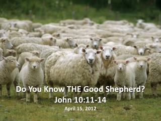 Do You Know  THE Good  Shepherd ? John 10:11-14 April 15, 2012