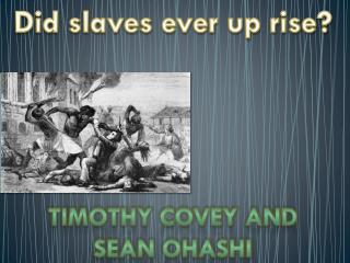 Did slaves ever up rise?