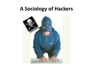 A Sociology of Hackers