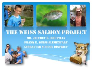 The Weiss Salmon Project