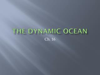 The Dynamic Ocean