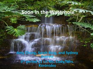 Soon in the Waterhole