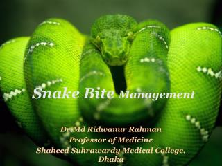 Snake  Bite  Management