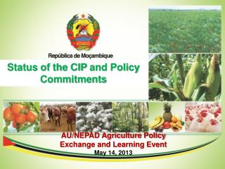 Status of the CIP  and Policy  Commitments