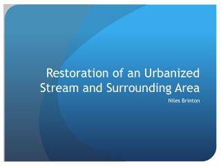 Restoration of an Urbanized Stream and Surrounding Area