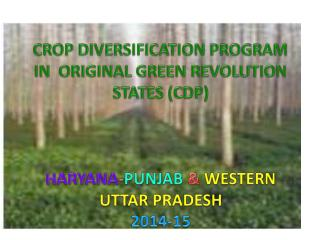 CROP DIVERSIFICATION PROGRAM IN  ORIGINAL GREEN REVOLUTION STATES (CDP)
