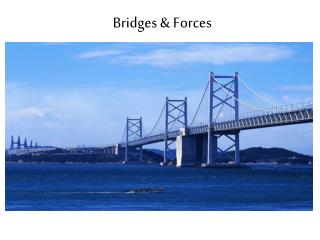 Bridges & Forces