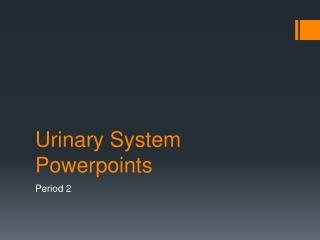 Urinary System  Powerpoints
