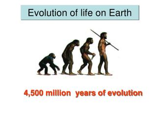 Evolution of life on Earth