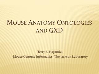 Mouse Anatomy Ontologies and GXD