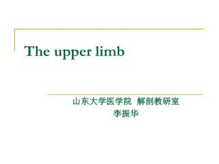 The upper limb