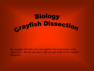 Biology Crayfish Dissection