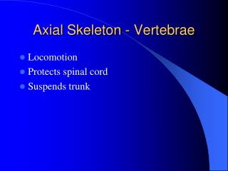Axial Skeleton - Vertebrae