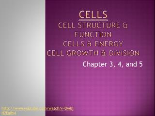 Cells Cell Structure & Function Cells & Energy Cell Growth & Division