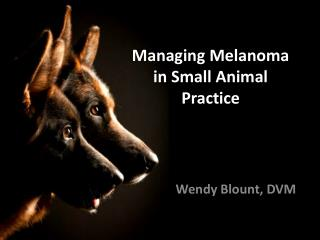 Managing Melanoma in Small Animal Practice