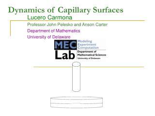 Dynamics of Capillary Surfaces