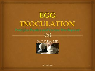 EGG  INOCULATION Principles Practice and Vaccine Development
