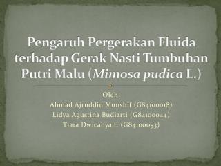 Pengaruh Pergerakan Fluida terhadap Gerak Nasti Tumbuhan Putri Malu ( Mimosa pudica  L.)