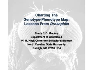 Charting The  Genotype-Phenotype Map: Lessons From  Drosophila