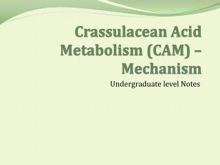 Crassulacean  Acid Metabolism (CAM) – Mechanism