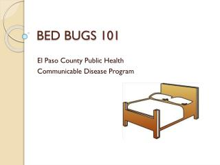 BED BUGS 101