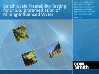 Bench-Scale Treatability Testing for  In Situ  Bioremediation of Mining-Influenced Water