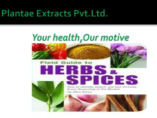 Plantae  Extracts  Pvt.Ltd . Your  health,Our  motive