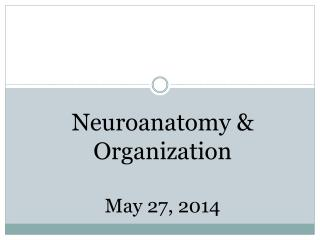 Neuroanatomy  & Organization May 27, 2014