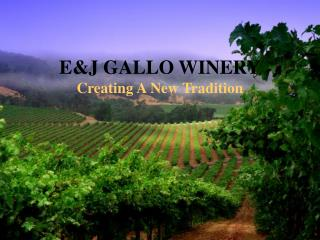 E&J GALLO WINERY Creating A New Tradition