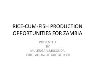 RICE-CUM-FISH PRODUCTION OPPORTUNITIES FOR ZAMBIA